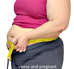 Obesity And Pregnancy | Risks, Prevention And Dealing With ...